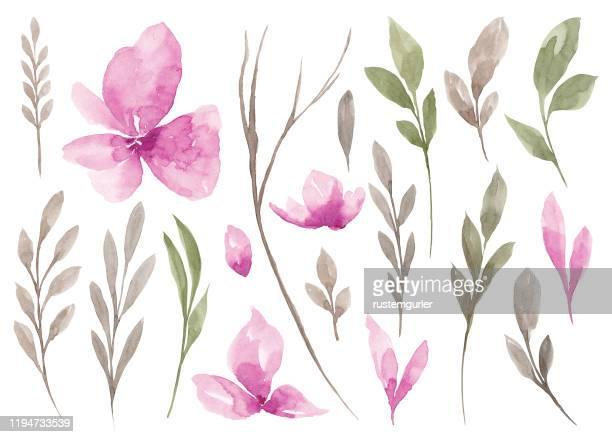 水彩花と緑の葉のセット - ユーカリの葉点のイラスト素材/クリップアート素材/マンガ素材/アイコン素材