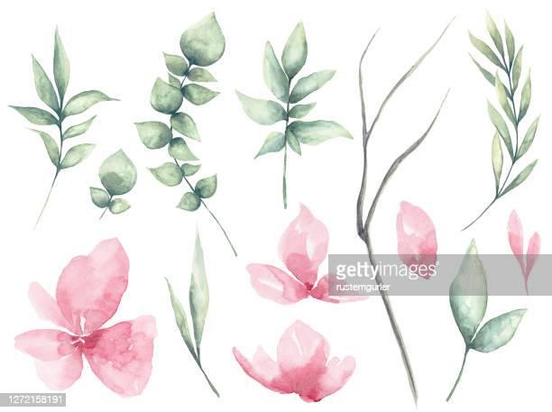 水彩の花と緑の葉のセット - ユーカリの葉点のイラスト素材/クリップアート素材/マンガ素材/アイコン素材