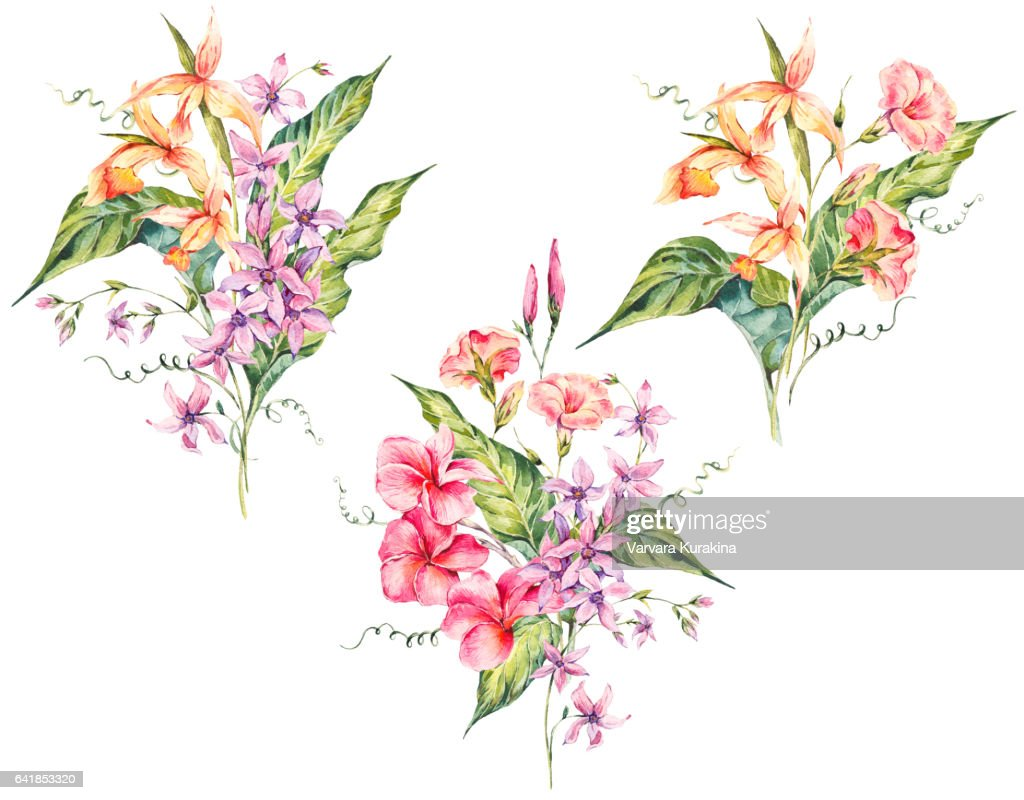 Set Of Watercolor Tropical Vintage Floral Bouquet Of Exotic Flowers ...