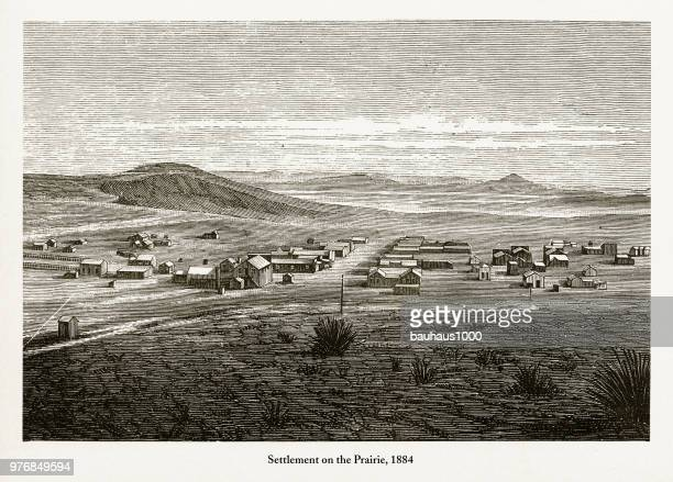 settlement on the prairie, early american engraving, 1884 - prairie stock illustrations, clip art, cartoons, & icons