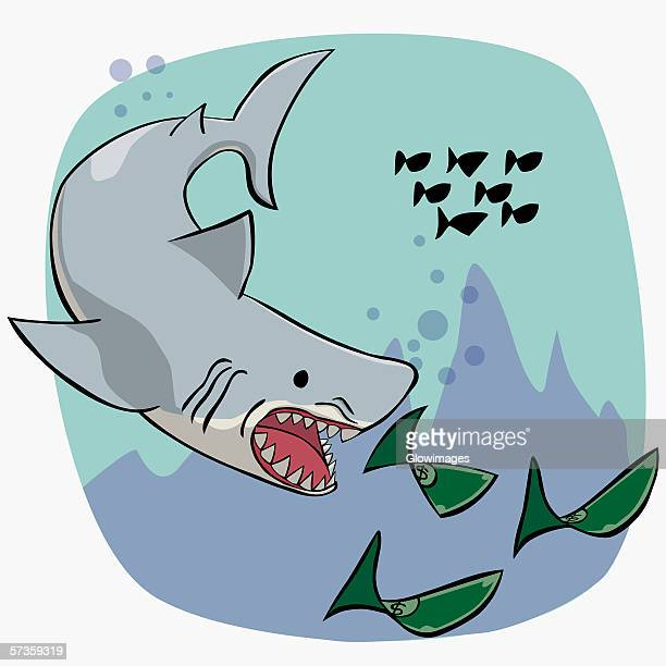 shark chasing fish in the form of money - head above water stock illustrations