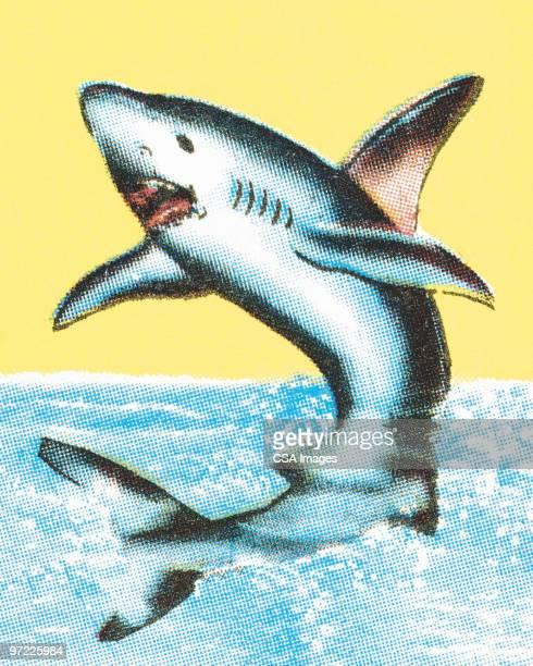 shark - tail fin stock illustrations, clip art, cartoons, & icons