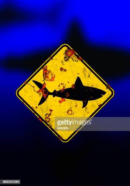 shark warning sign - great white shark stock illustrations, clip art, cartoons, & icons