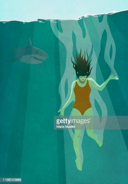 shark watching oblivious woman dive into ocean - wildlife stock illustrations