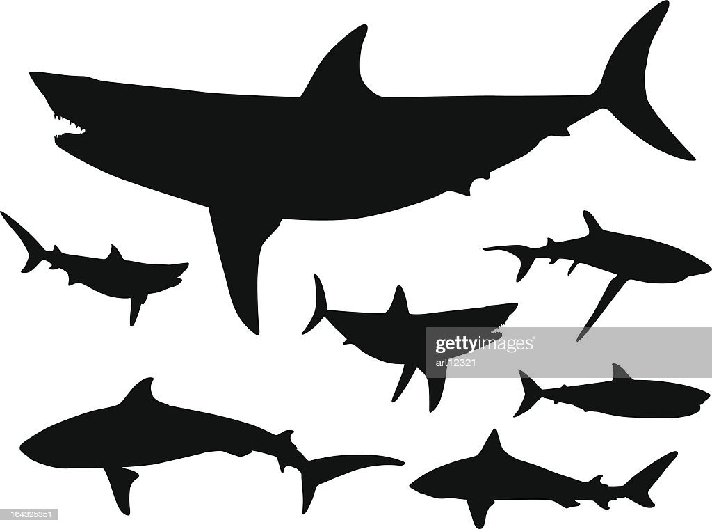 Sharks in the water Silhouette