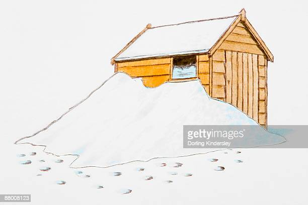 Shed covered in snow, footprints