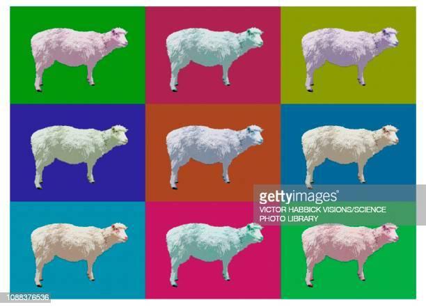 sheep cloning, illustration - 羊点のイラスト素材/クリップアート素材/マンガ素材/アイコン素材