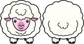 sheep-little lamb