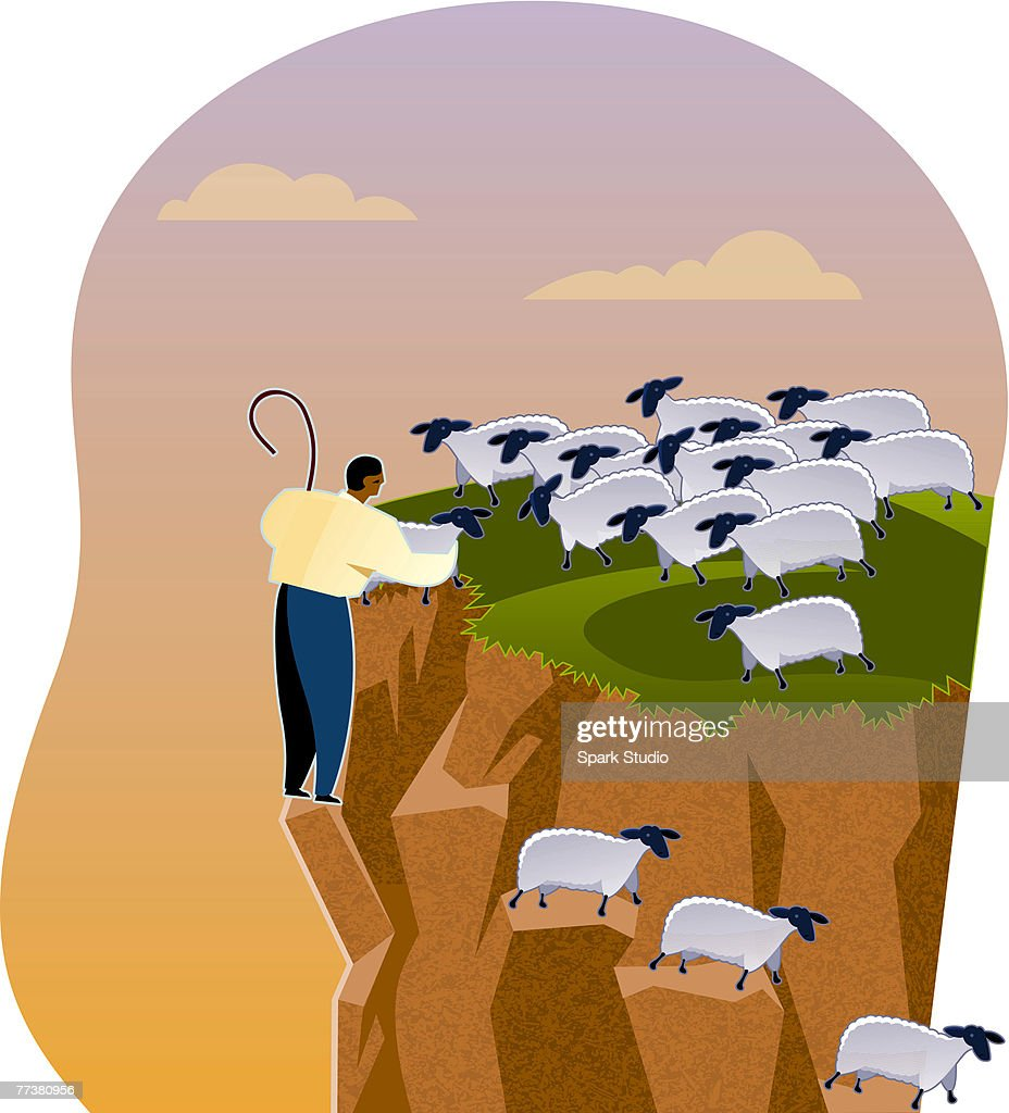 A shepherd helping sheep down a cliff : Illustration