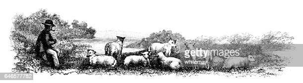羊飼いは彼の羊の群れを気に - 羊の群点のイラスト素材/クリップアート素材/マンガ素材/アイコン素材