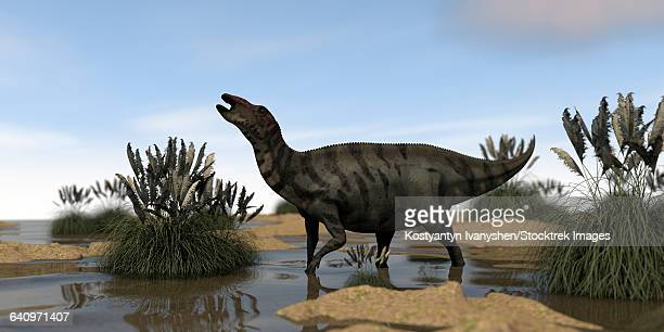 Shuangmiaosaurus in swamp water.