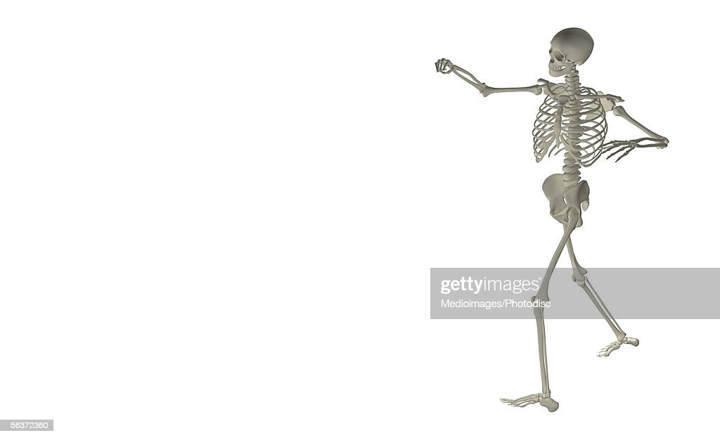 Side Profile Of A Human Skeleton Stock Illustration Getty Images