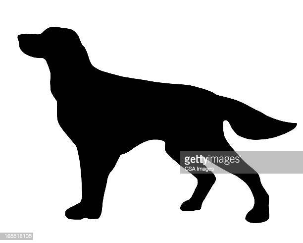 silhouette of a dog - domestic animals stock illustrations