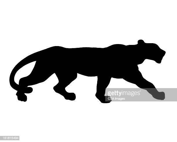 ilustraciones, imágenes clip art, dibujos animados e iconos de stock de silhouette of big cat - jaguar