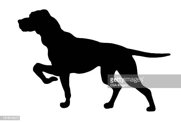 silhouette of pointing dog - pointer dog stock illustrations
