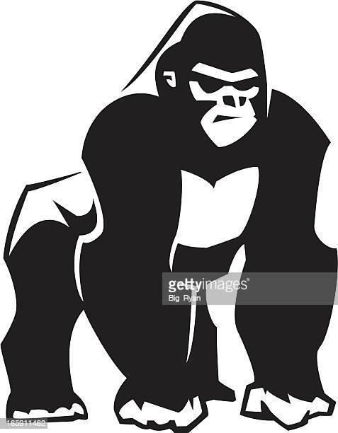 silverback gorilla graphic