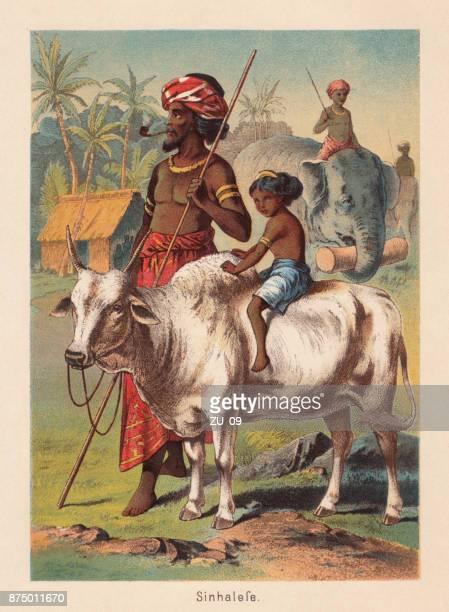illustrazioni stock, clip art, cartoni animati e icone di tendenza di sinhalese, indo-aryan ethnic group on sri lanka, lithograph, published 1885 - etnia indo asiatica