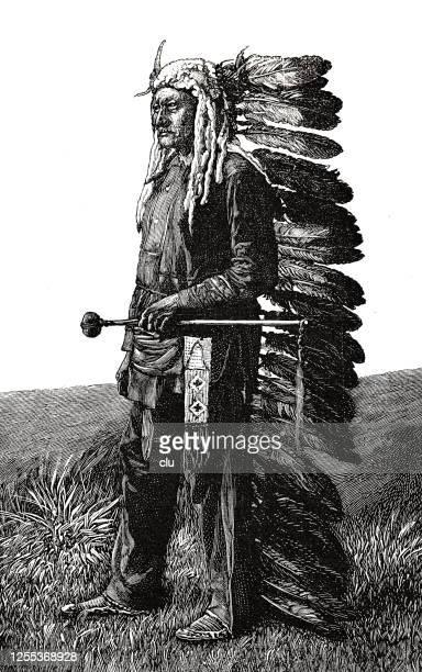 ilustraciones, imágenes clip art, dibujos animados e iconos de stock de indio sioux, longitud completa, de pie en un prado, vista lateral - indios americanos sioux
