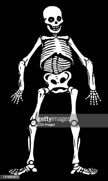 skeleton - spooky stock illustrations