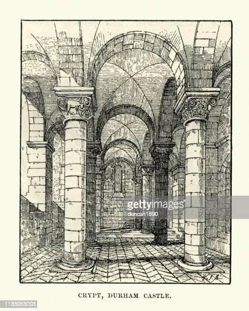 ilustraciones, imágenes clip art, dibujos animados e iconos de stock de boceto del castillo de durham, cripta, siglo 19 - arco característica arquitectónica