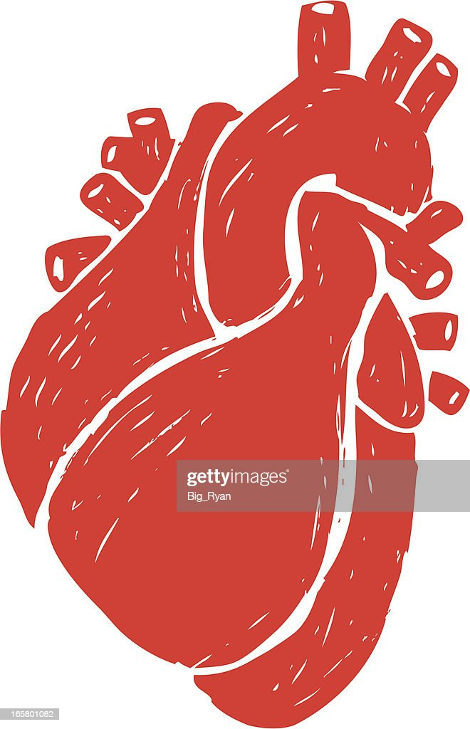Human Heart Stock Illustrations And Cartoons | Getty Images