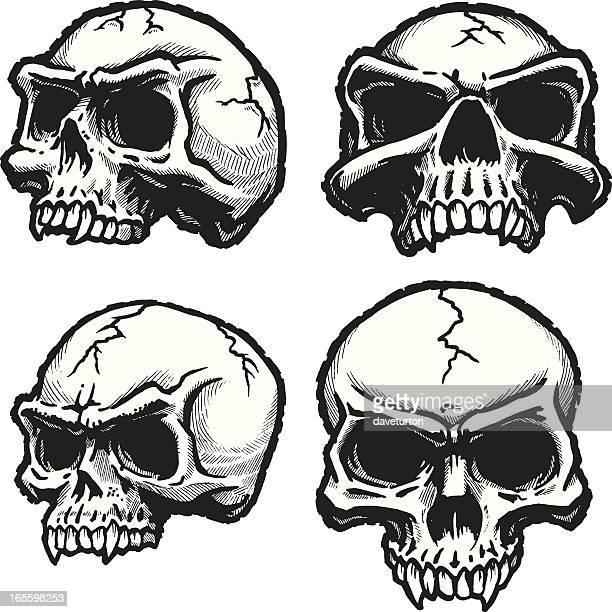 Skull 4-Pack