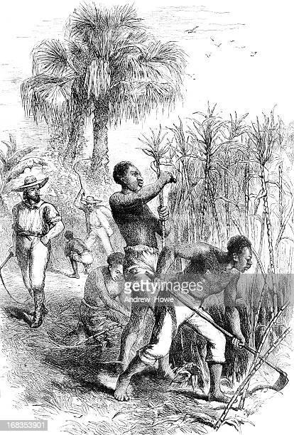 slavery - american culture stock illustrations