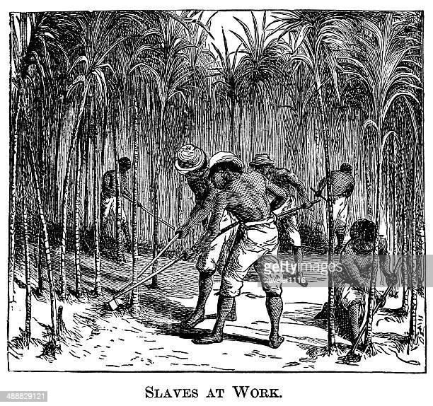 illustrations, cliparts, dessins animés et icônes de esclaves au travail - image du xixème siècle