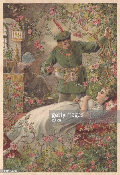 sleeping beauty, lithograph, published in 1891 - princess stock illustrations, clip art, cartoons, & icons