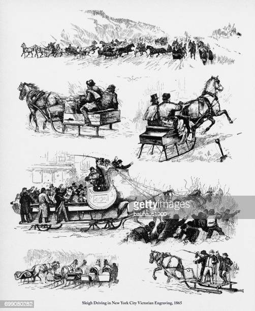 sleigh driving in new york city victorian engraving, 1865 - horsedrawn stock illustrations, clip art, cartoons, & icons