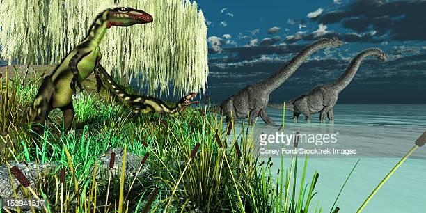Small Dilong dinosaurs watch as two Brachiosaurus dinosaurs wade across a lake.
