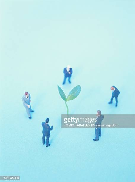small figurines looking at a cotyledon sprout - plant stage stock illustrations, clip art, cartoons, & icons