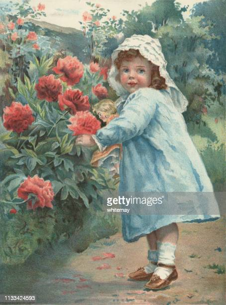 small victorian girl picking flowers - hood clothing stock illustrations