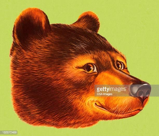 illustrations, cliparts, dessins animés et icônes de ours souriant - ours