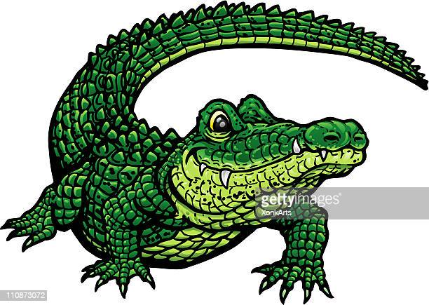 smiling gator g - alligator stock illustrations, clip art, cartoons, & icons