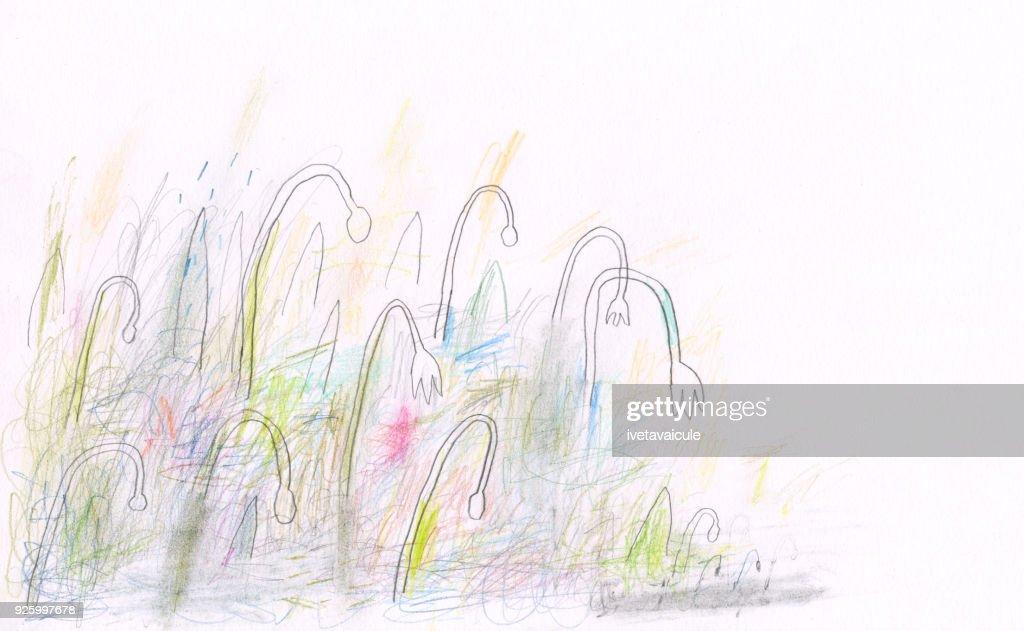 Snowdrops : Stock Illustration