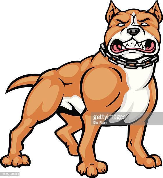 ilustraciones, imágenes clip art, dibujos animados e iconos de stock de bronceado pitbull - pit bull terrier