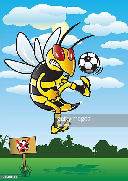 Soccer Hornet