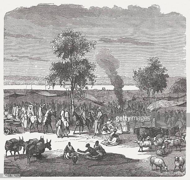 Sokoto (Sakkwato) in Nigeria, 19th century, wood engraving, published 1880
