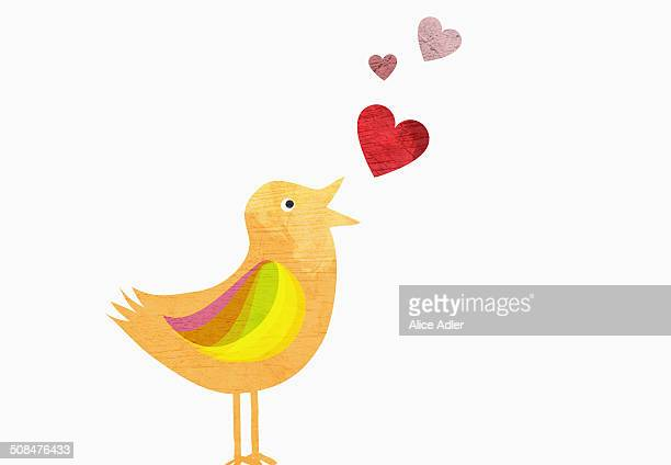 ilustrações de stock, clip art, desenhos animados e ícones de songbird with heart shapes representing love against white background - cantodepassarinho