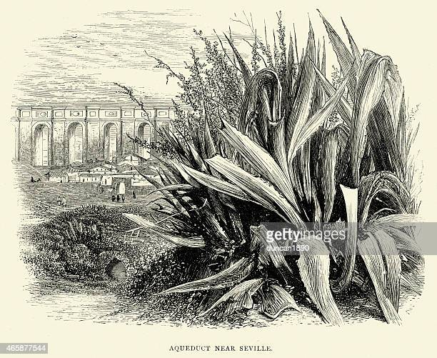 spanish pictures - ancient aqueduct near seville - aqueduct stock illustrations, clip art, cartoons, & icons