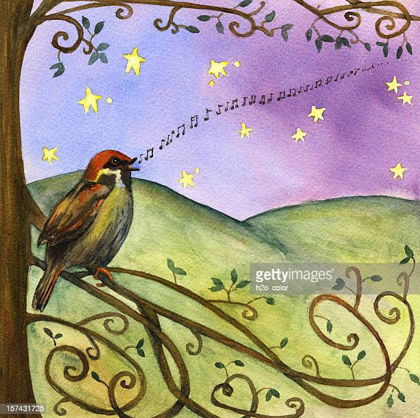 sparrow sings - vine stock illustrations