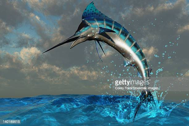 a spectacular blue marlin flashes its iridescent colors as it bursts from the ocean. - marlin stock illustrations, clip art, cartoons, & icons