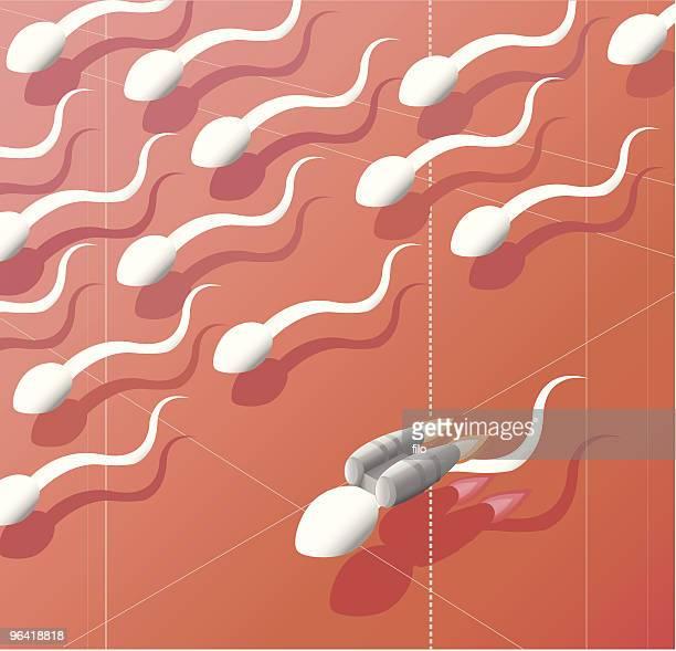 speedy swimmer [vector] - sperm stock illustrations