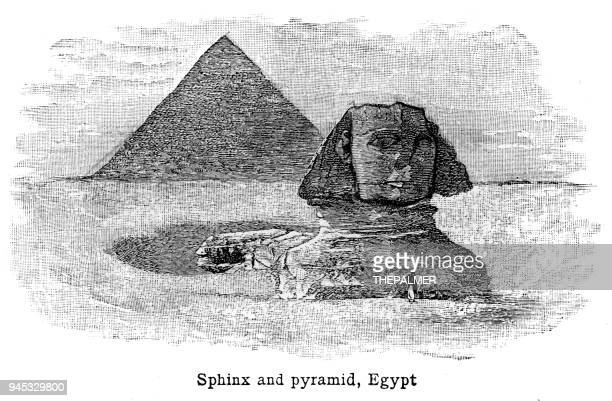 sphinx and pyramid egypt engraving 1892 - the sphinx stock illustrations, clip art, cartoons, & icons