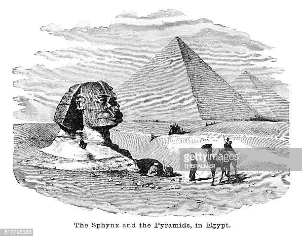 sphinx and the pyramids engraving illustration - the sphinx stock illustrations, clip art, cartoons, & icons