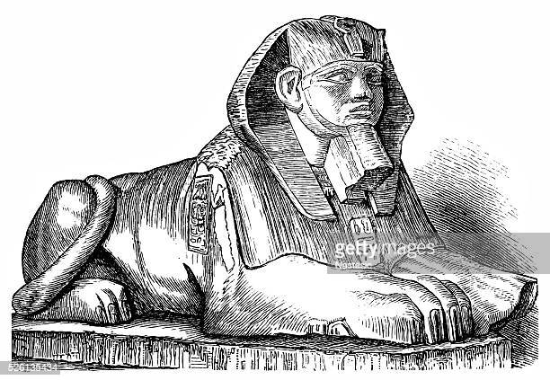 sphinx - the sphinx stock illustrations, clip art, cartoons, & icons