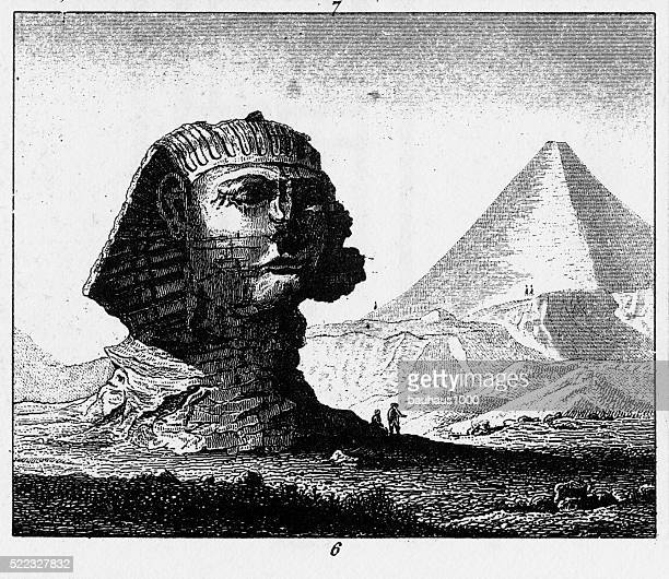 sphinx of giza engraving - the sphinx stock illustrations, clip art, cartoons, & icons
