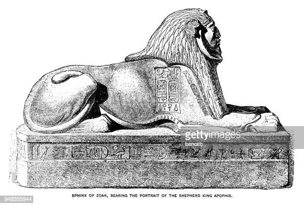 sphinx of zoan, bearing the portrait of the shepherd king apophis - the sphinx stock illustrations, clip art, cartoons, & icons