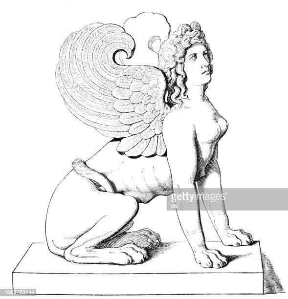 sphinx statue on white background, side view - the sphinx stock illustrations, clip art, cartoons, & icons